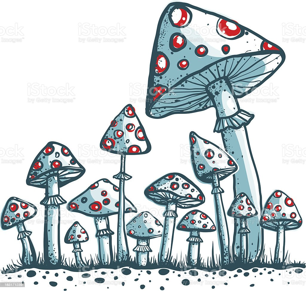 Spotted Toadstool Mushrooms royalty-free stock vector art
