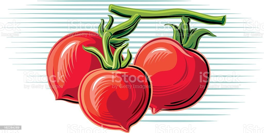 sprig of tomatoes royalty-free stock vector art