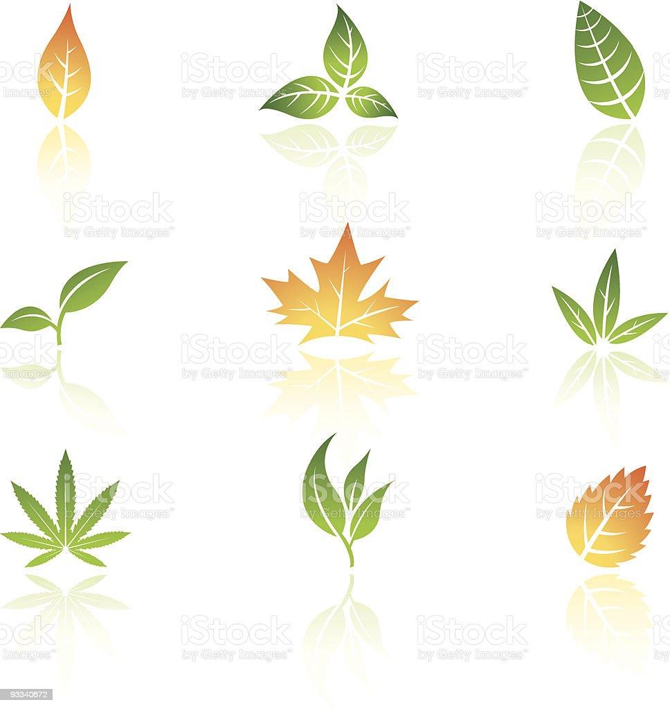 Printemps et automne feuilles stock vecteur libres de droits libre de droits