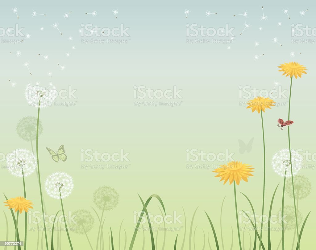 Spring background with dandelions royalty-free stock vector art