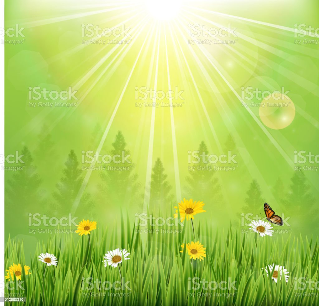 Spring background with flowers and butterflies in meadow and pine trees vector art illustration