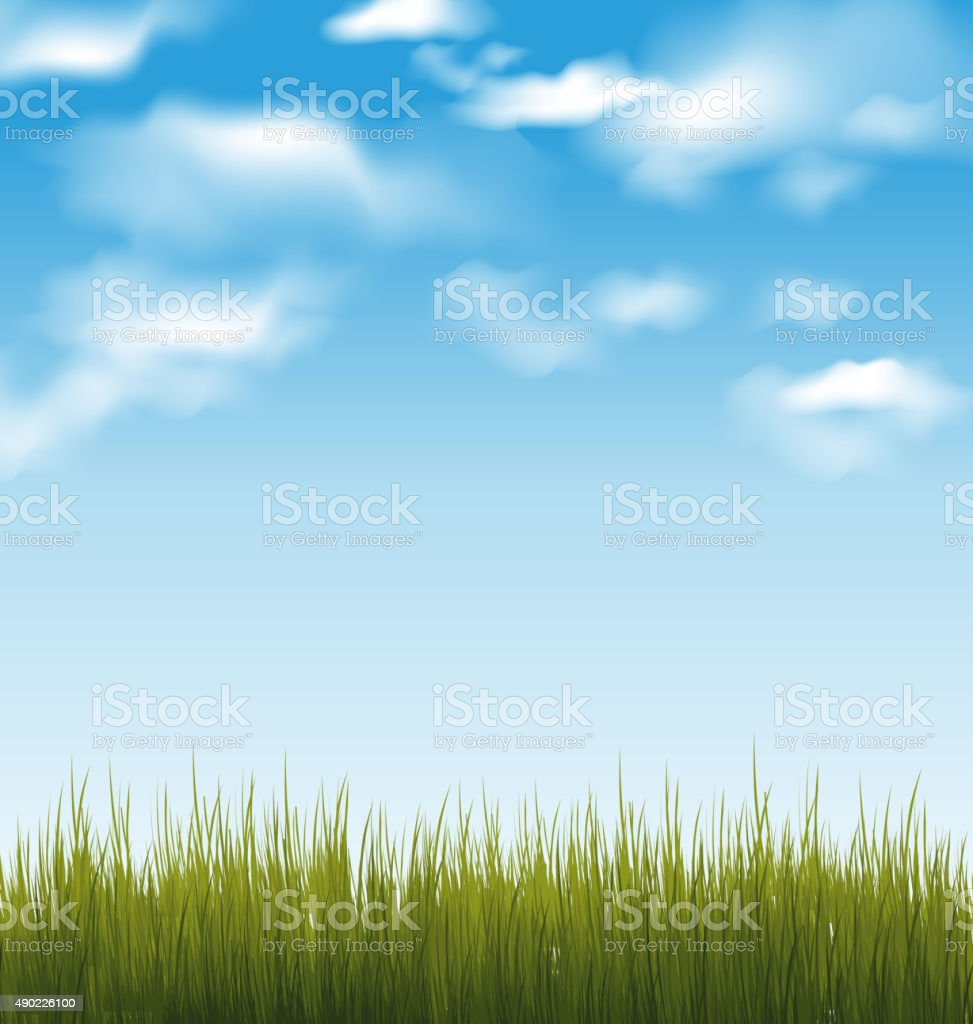Spring background with green grass and sky vector art illustration