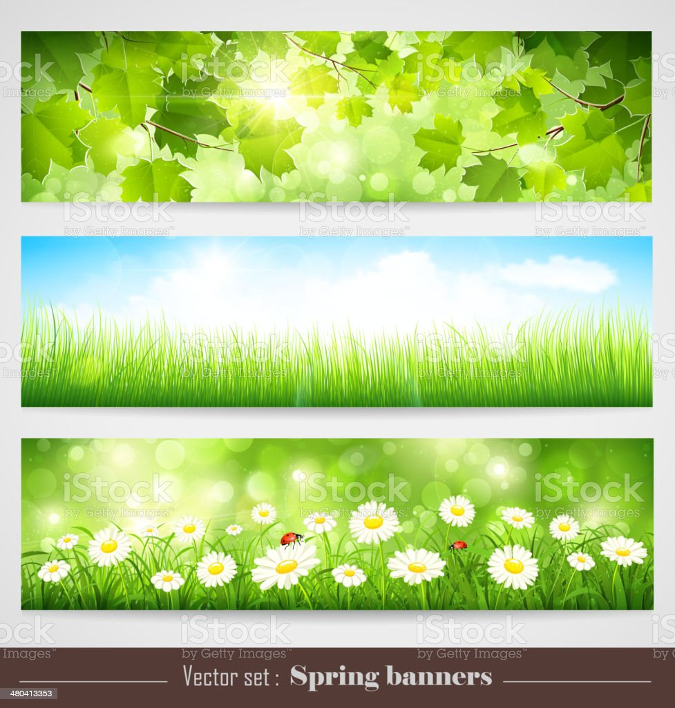 Spring banners vector art illustration