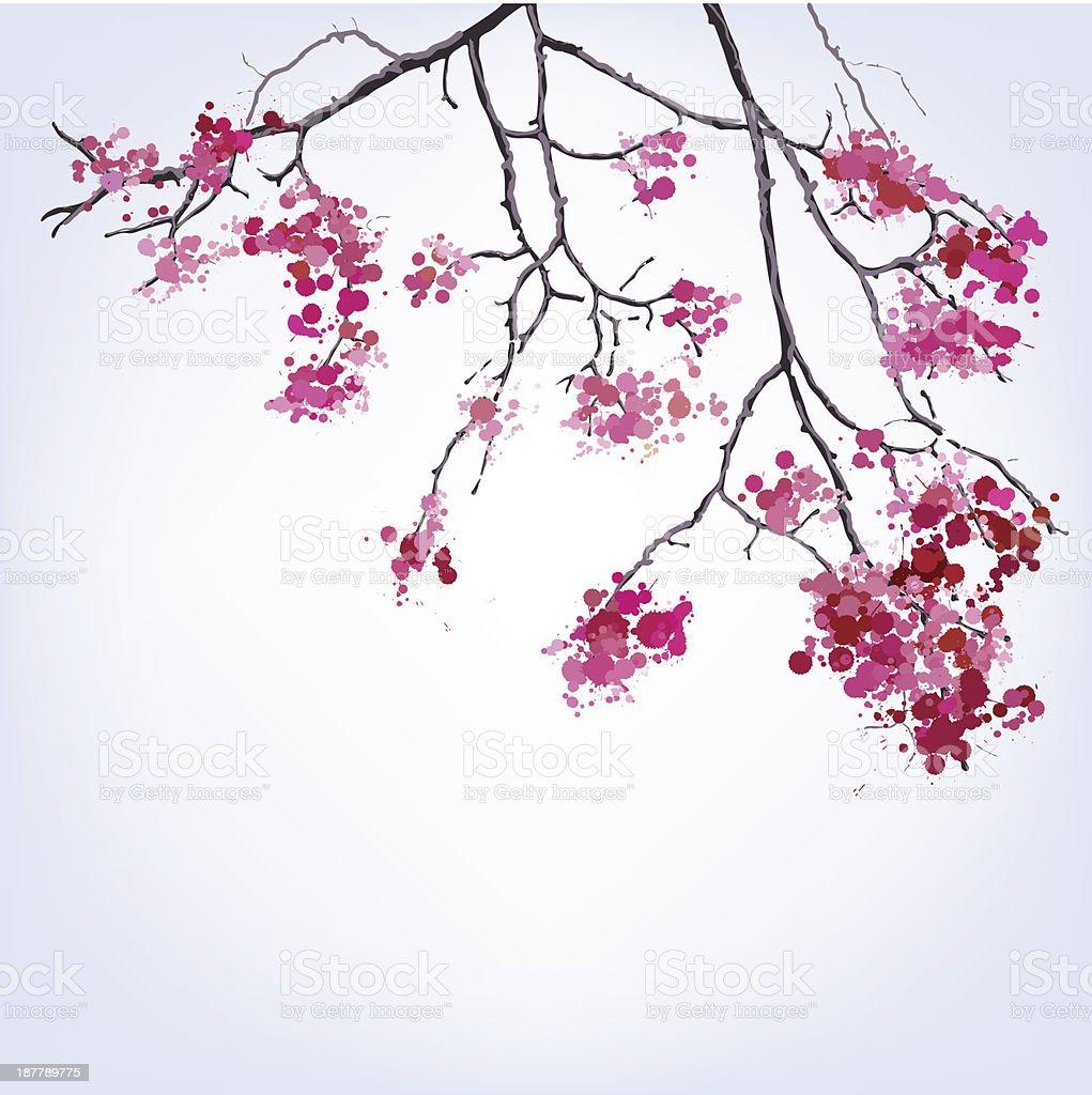 Ramo de primavera em flor de cerejeira blots fundo vetor e ilustração royalty-free royalty-free