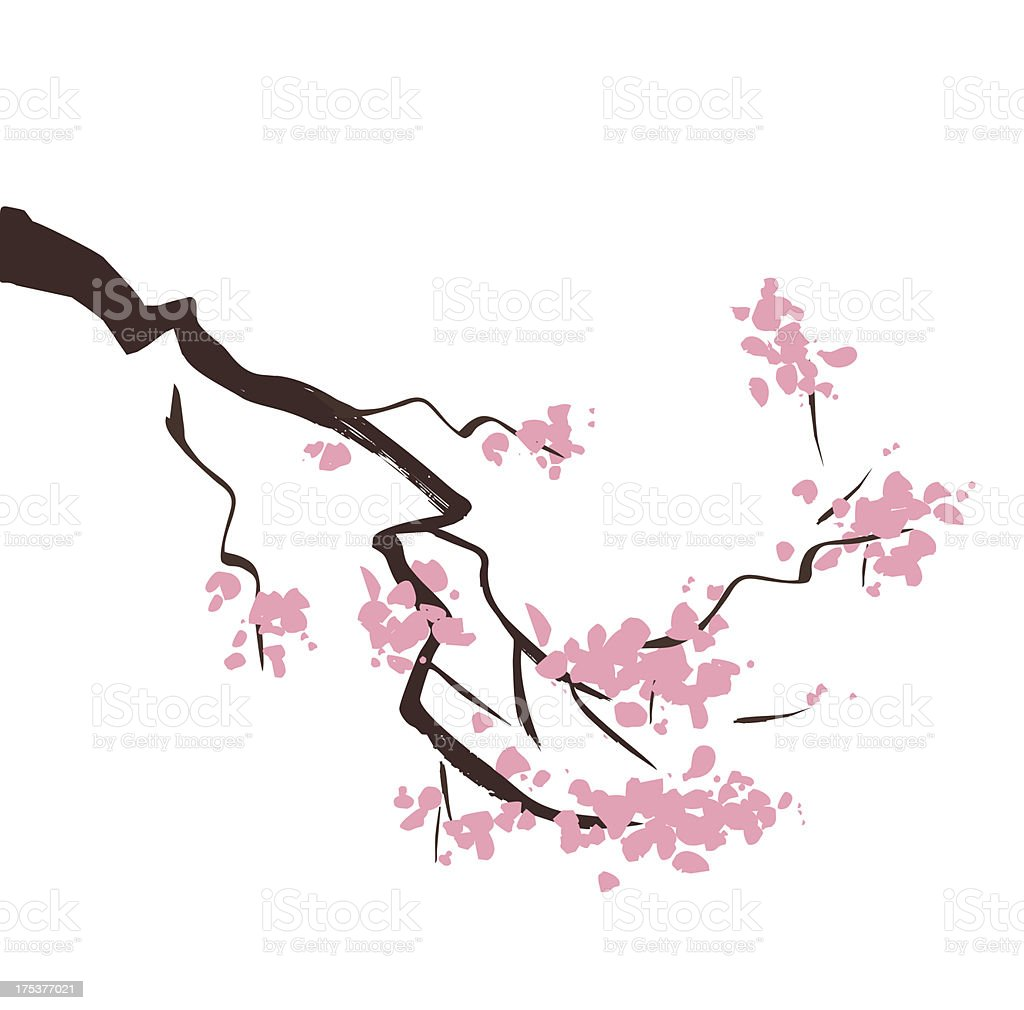 Spring blossom cherry tree branch royalty-free stock vector art