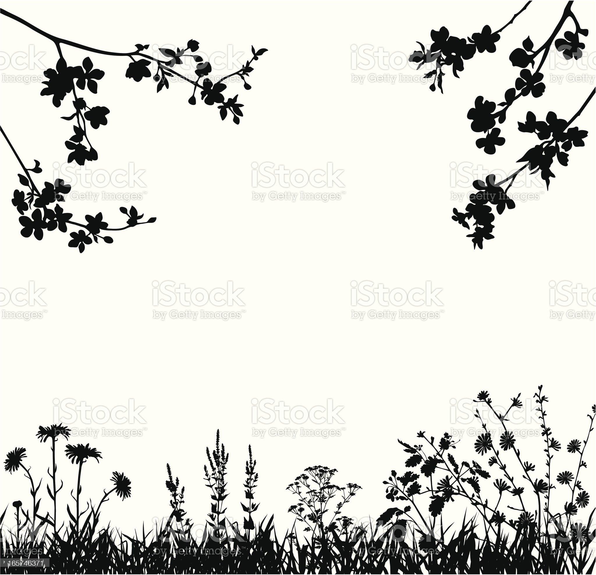 Spring blossomed garden royalty-free stock vector art