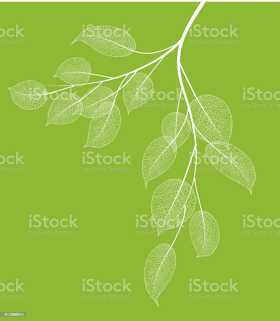 Spring branch vector art illustration