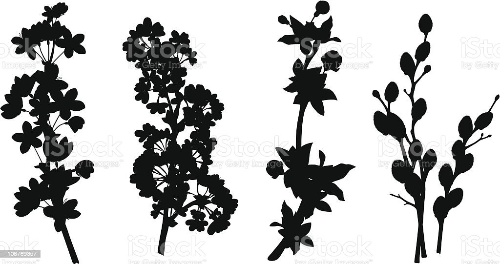 Spring branches silhouettes vector art illustration