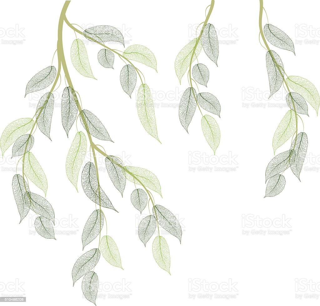 Spring branches vector art illustration