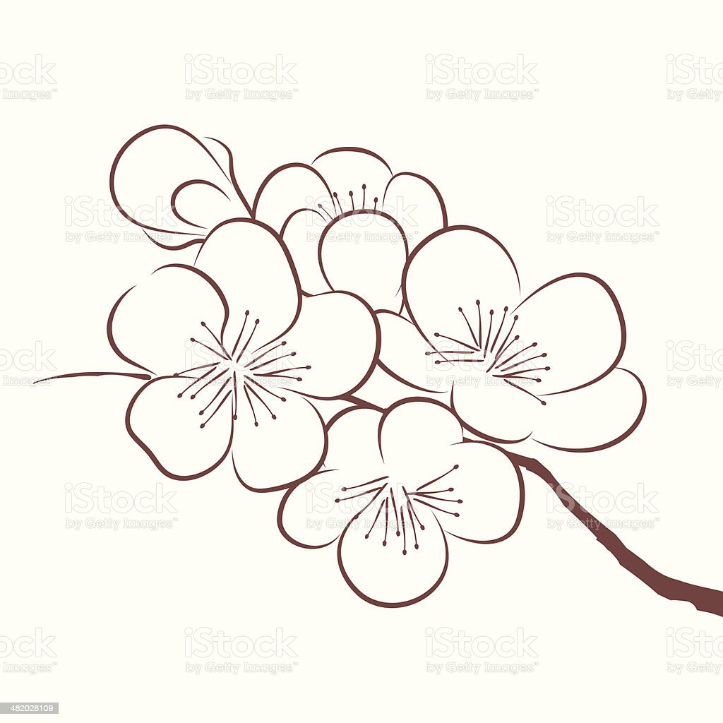 Spring cherry blossom vector art illustration