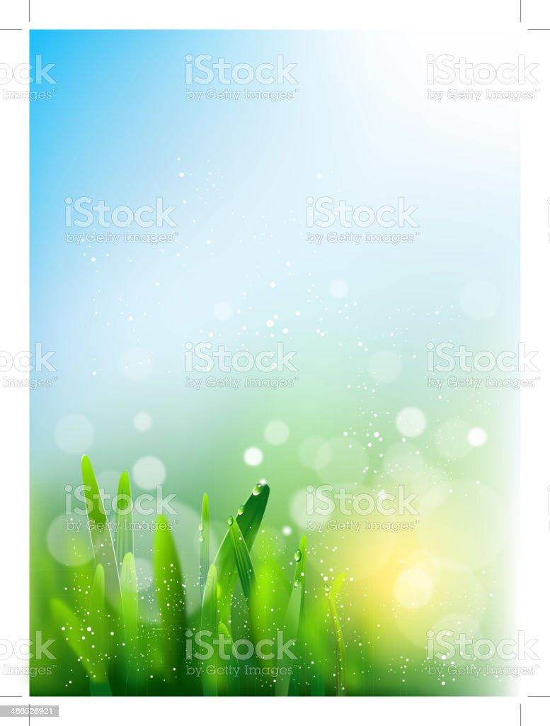 spring colors vector art illustration