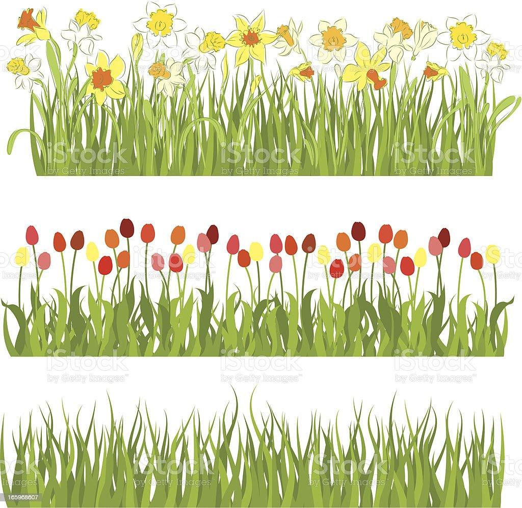 Spring fields royalty-free stock vector art