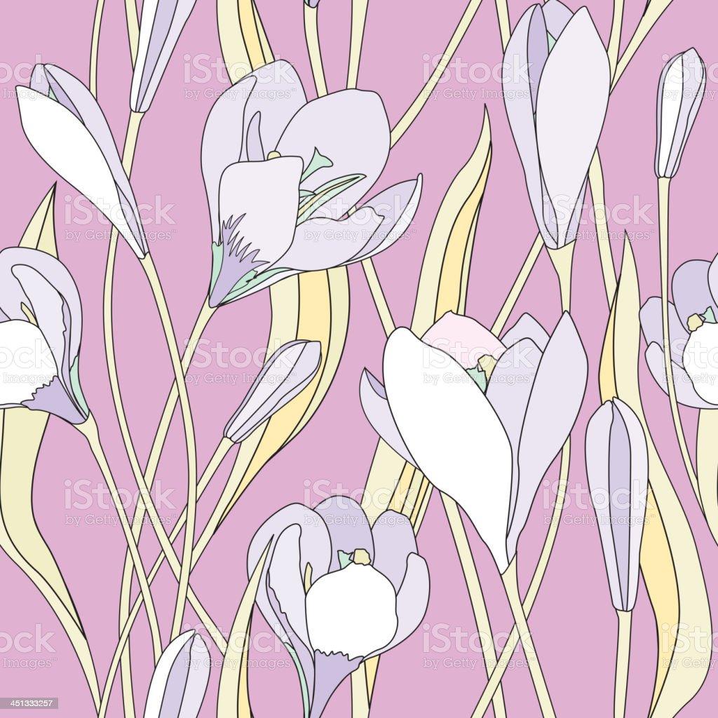 Spring flower crocus seamless background. royalty-free stock vector art