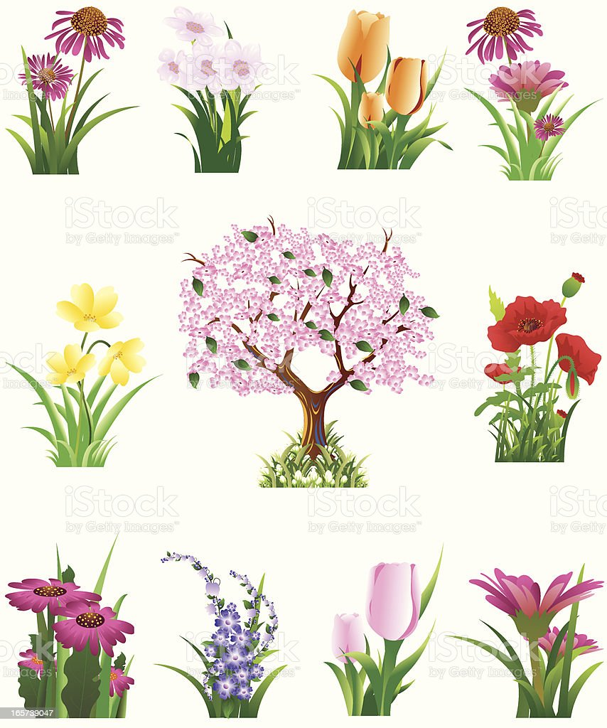 Spring  Flower Set royalty-free stock vector art