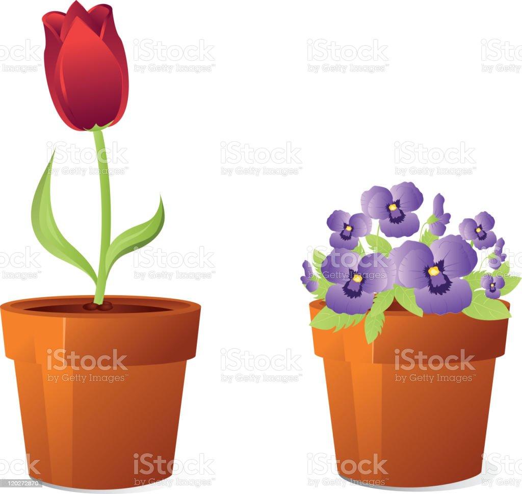Spring flowers in pot vector art illustration