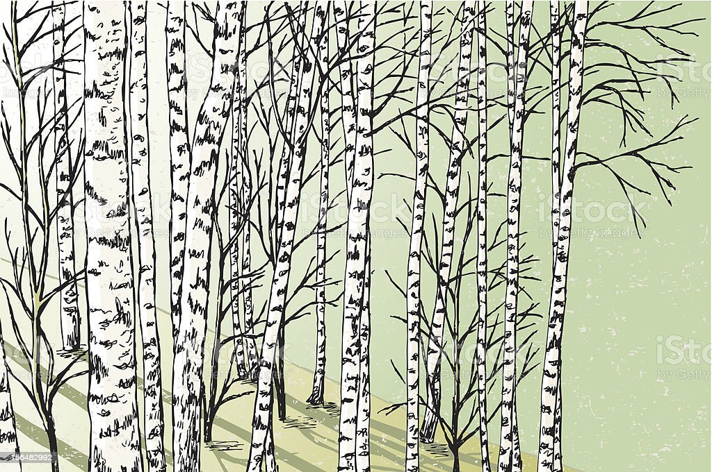 spring forest vector art illustration