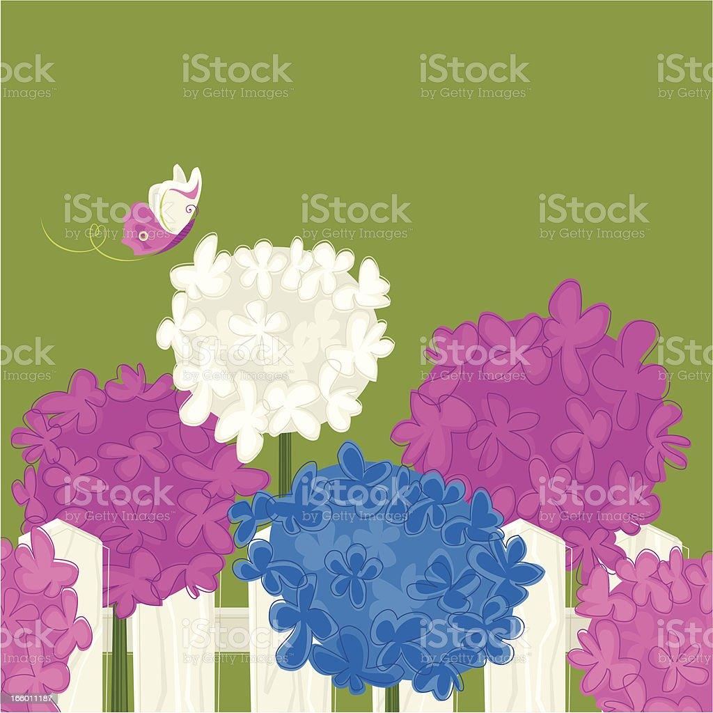 Spring Garden (Hydrangeas) royalty-free stock vector art