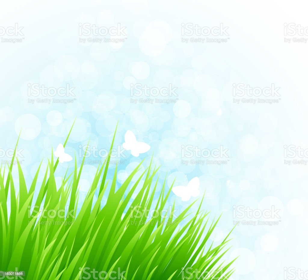Spring grass royalty-free stock vector art