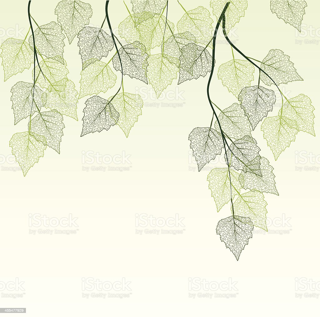 spring leaves royalty-free stock vector art