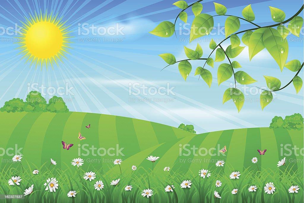 Spring meadow vector art illustration