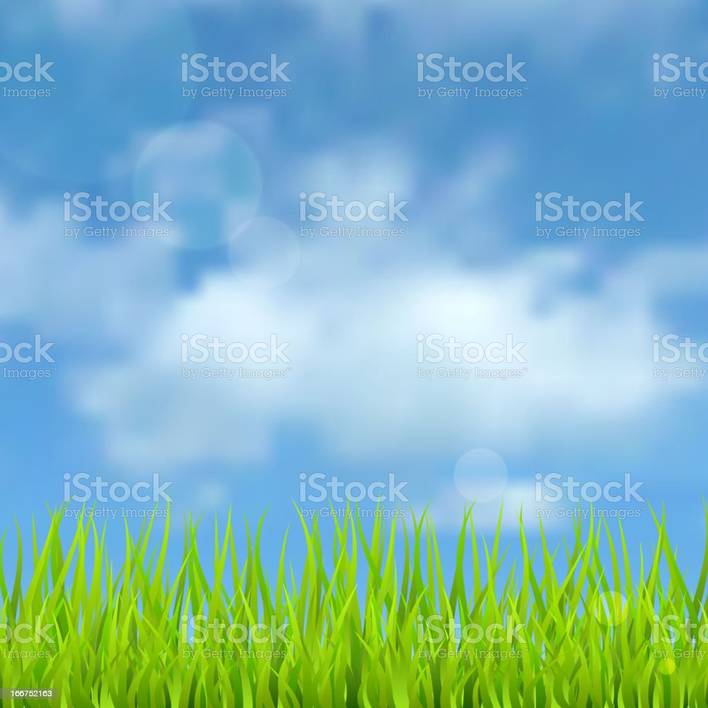Spring natural background with the sky, clouds and grass. royalty-free stock vector art