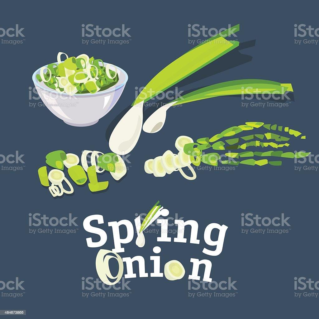 spring onion set -vector vector art illustration