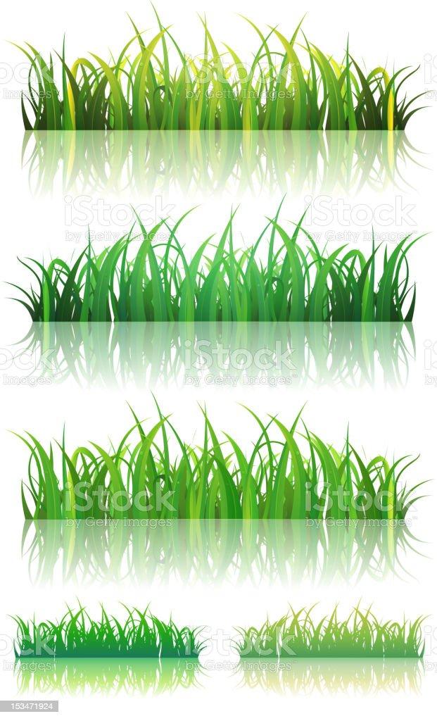 Spring Or Summer Green Grass Set royalty-free stock vector art