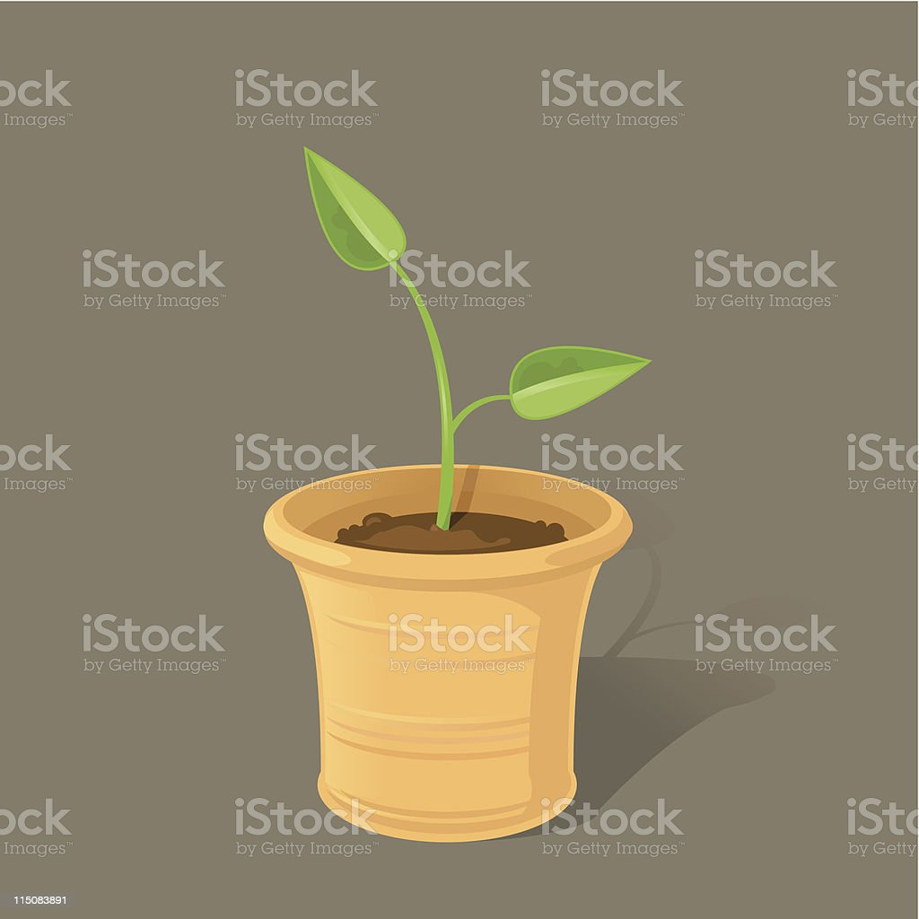 Spring Seedling vector art illustration