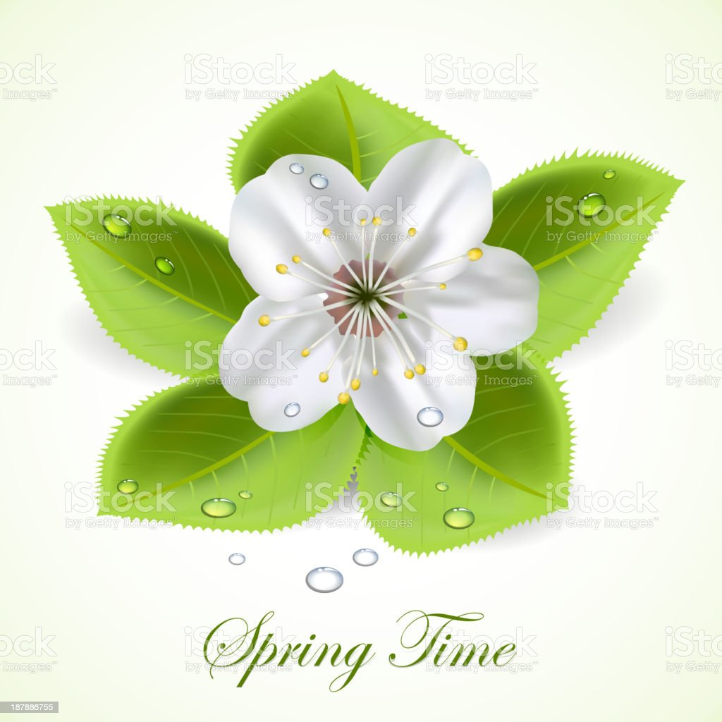 Spring time royalty-free stock vector art