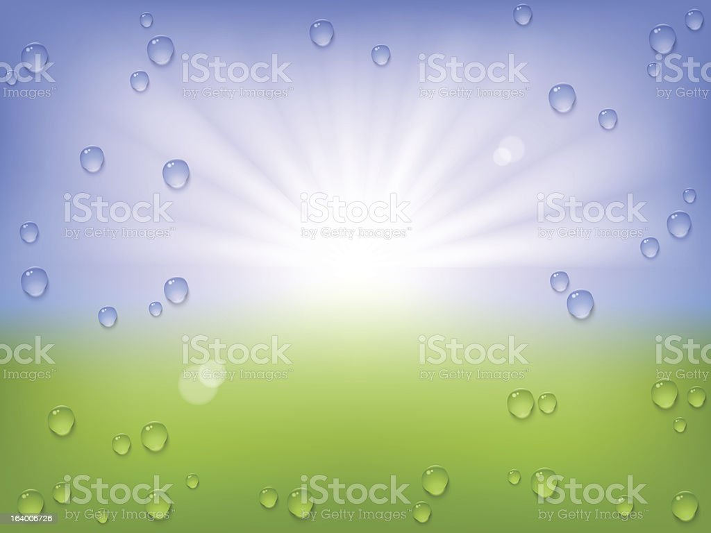 spring water drops background royalty-free stock vector art