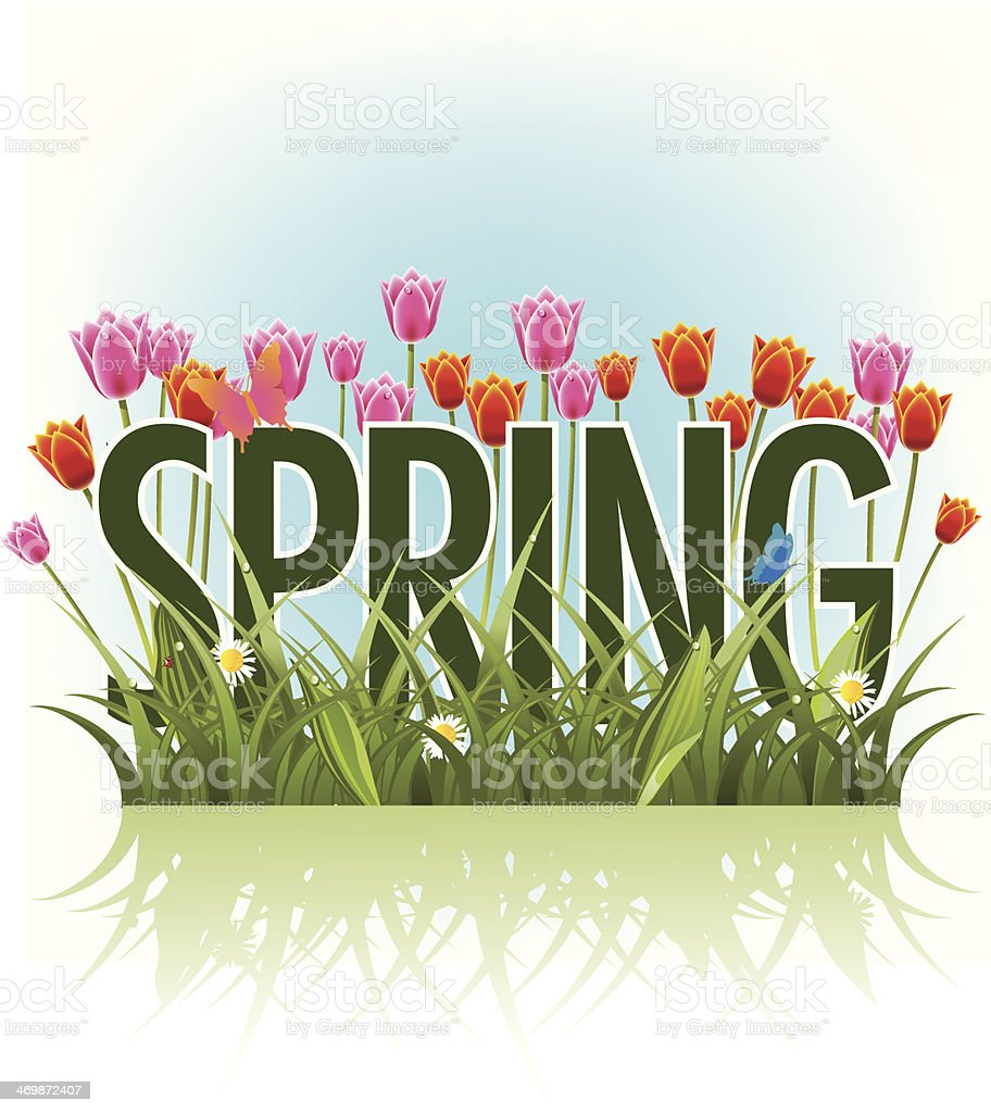 Spring word, grass and tulips vector art illustration