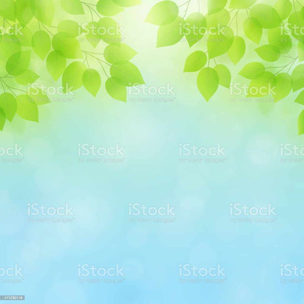Spring/Summer Vector Background vector art illustration
