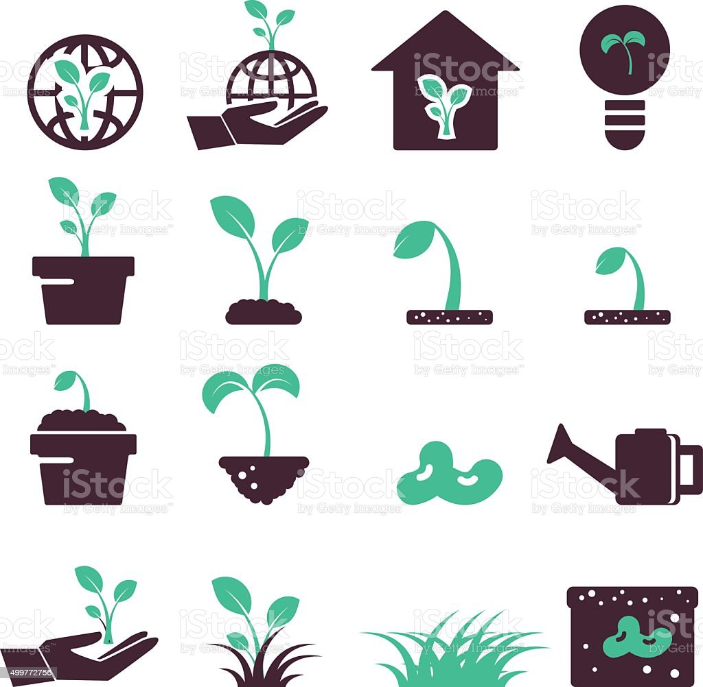 sprout icon set  vector vector art illustration