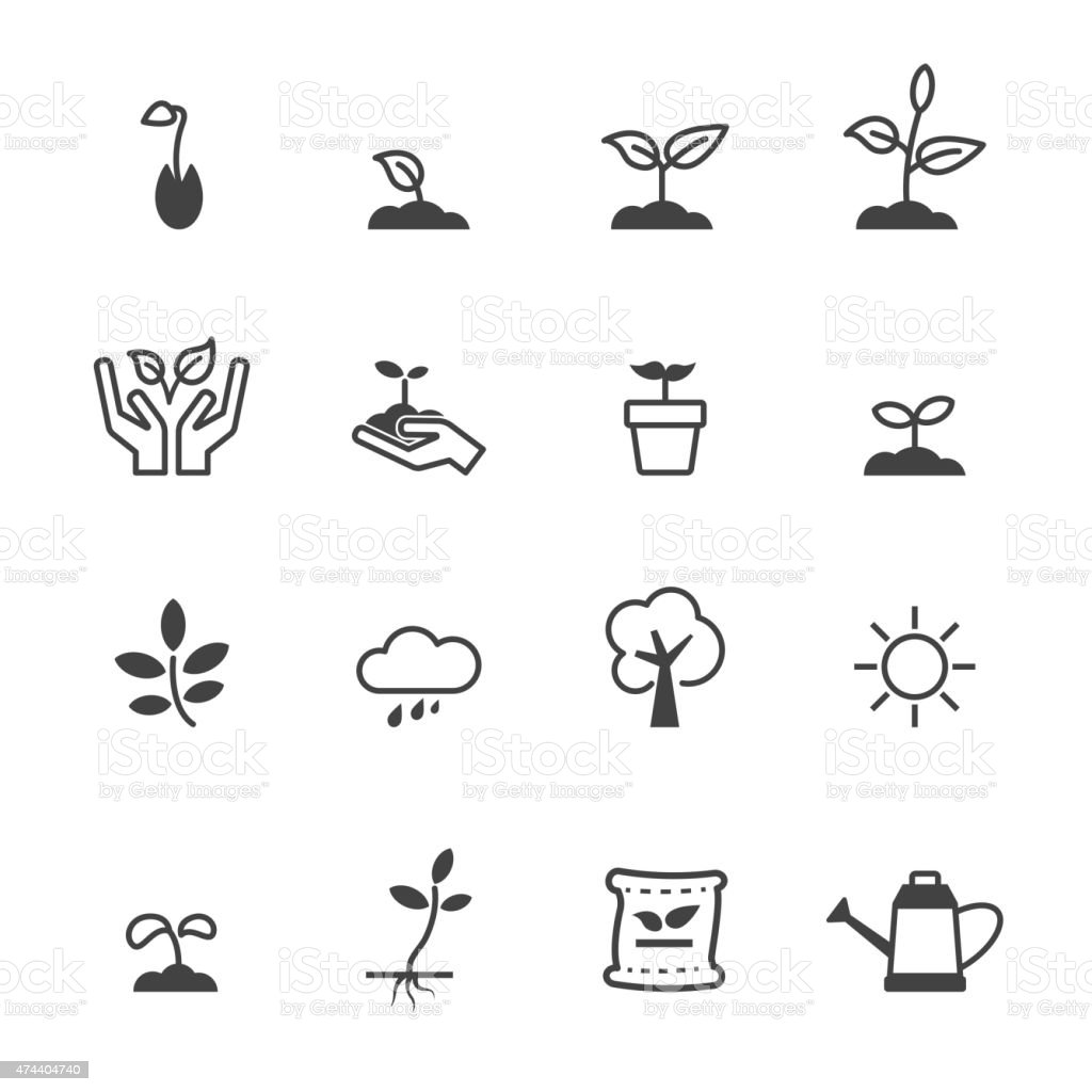 sprout icons vector art illustration