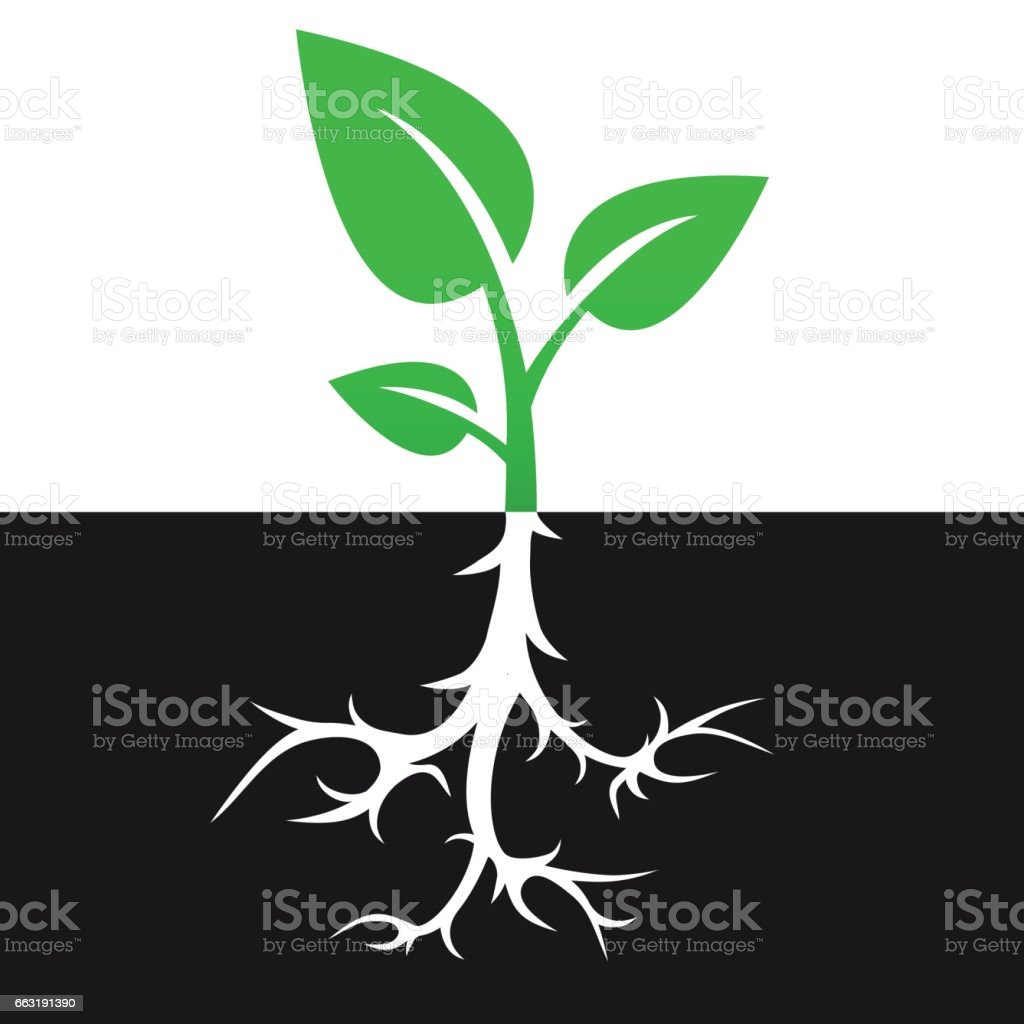 Sprout with root vector icon design vector art illustration