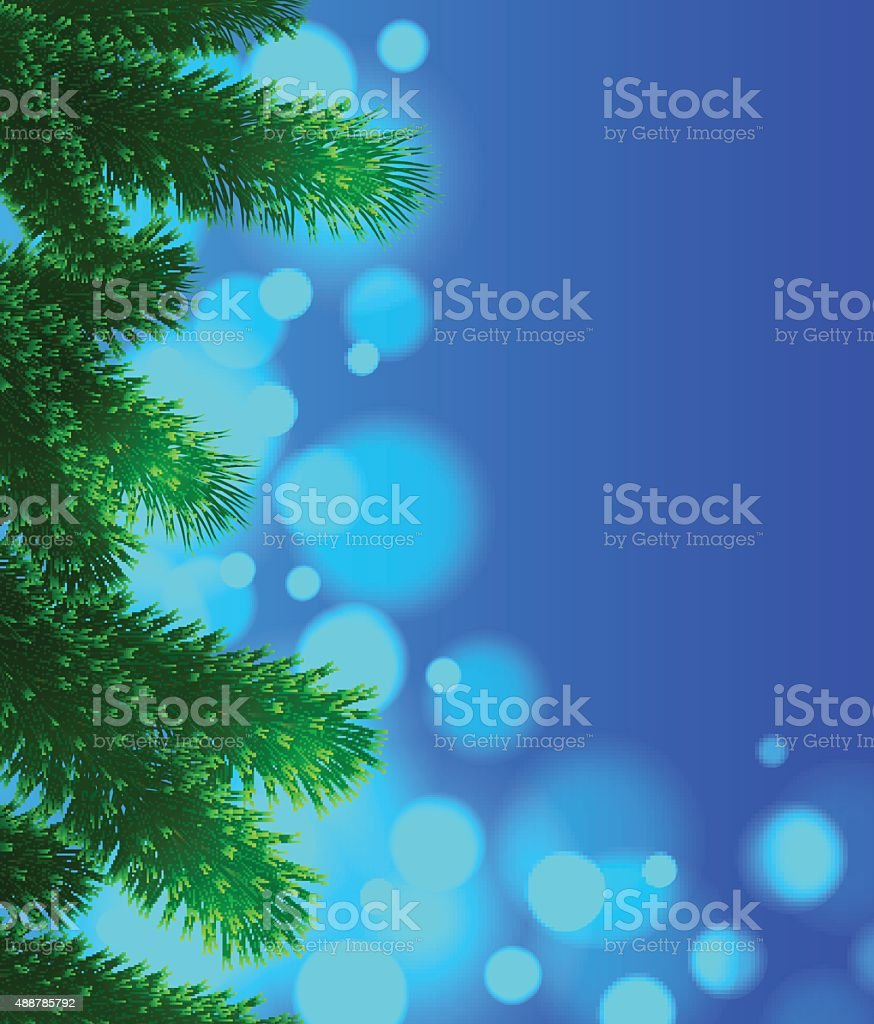 Spruce branches vector art illustration