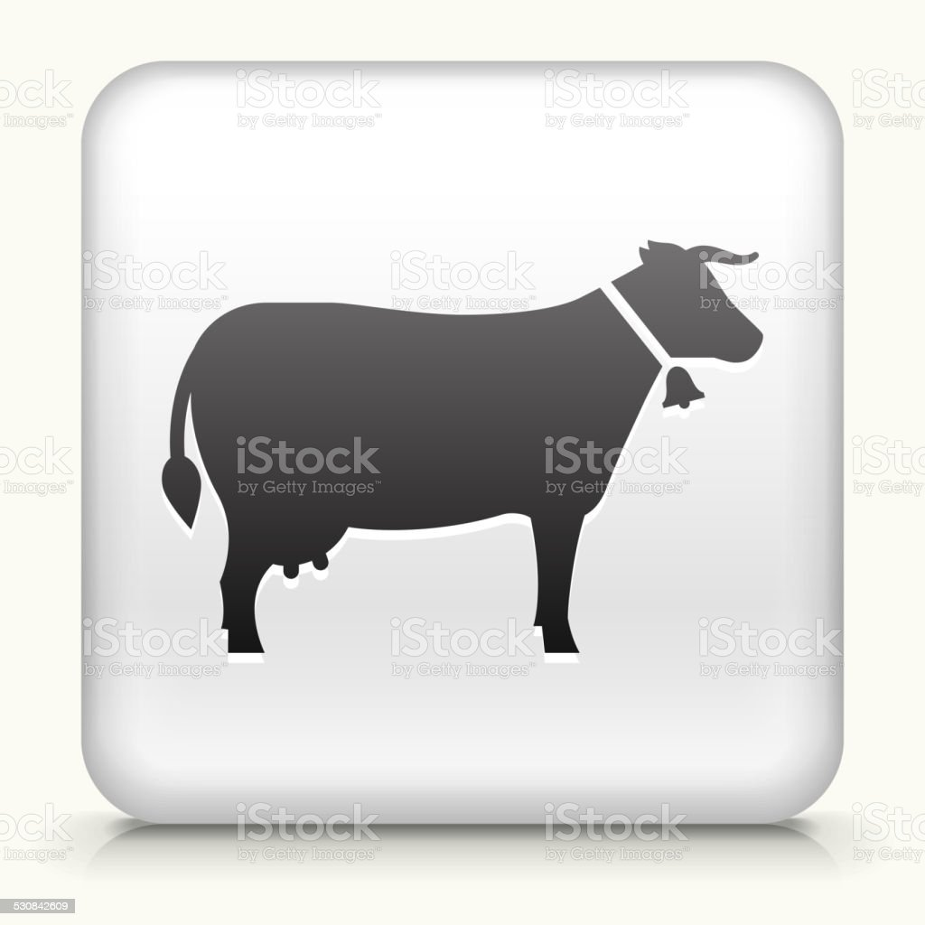 Square Button with Cow royalty free vector art vector art illustration