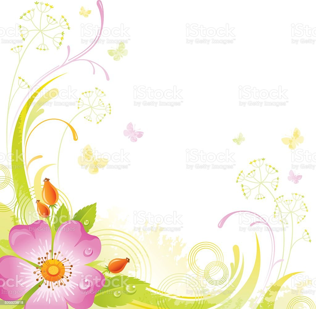Square flower background with copyspace: pink Wild Rose vector art illustration