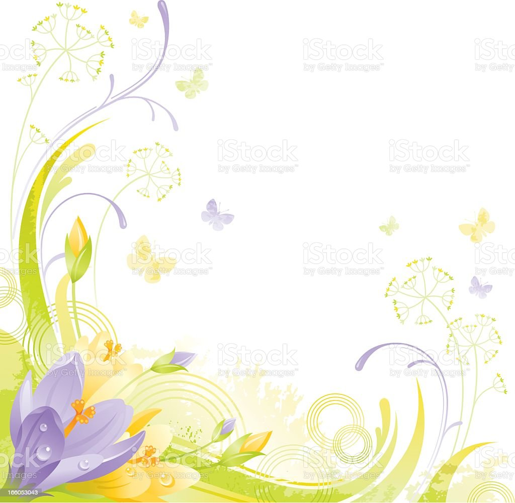 Square flower background with copyspace: violet and yellow Crocus vector art illustration