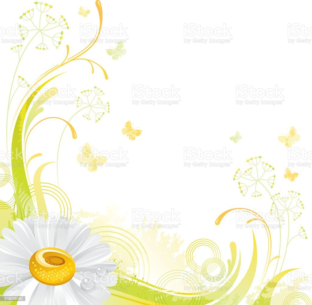 Square flower background with copyspace: white Daisy vector art illustration