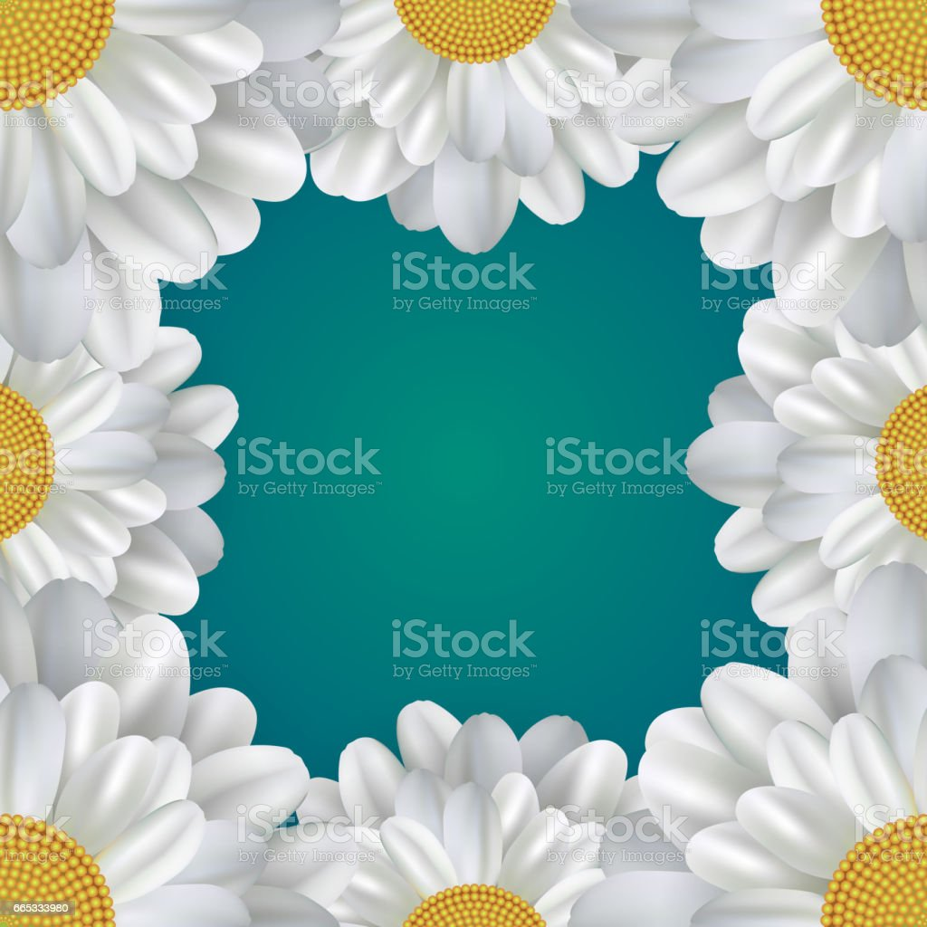 Square frame with daisies and a place for text. Vector element for postcards, banners and your creativity vector art illustration