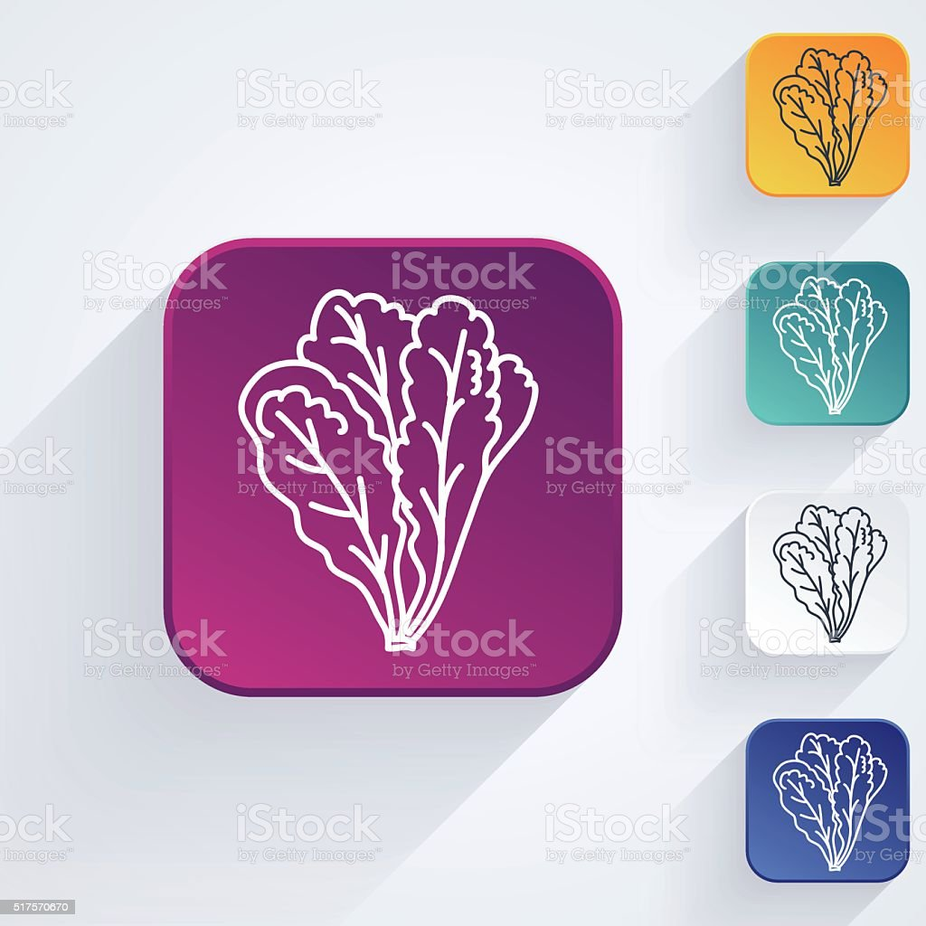 Square Vegetable Thin Line Art Icon Set - Romaine Lettuce vector art illustration