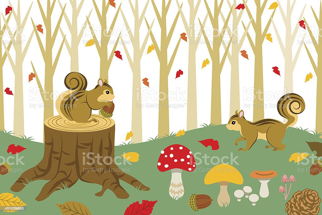 Squirrel Harvesting in autumn  forest royalty-free stock vector art