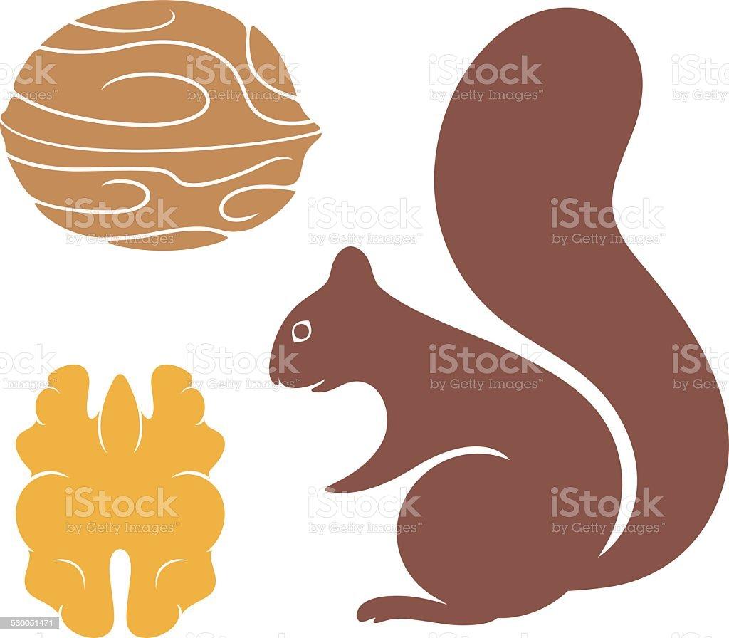 Squirrel vector art illustration