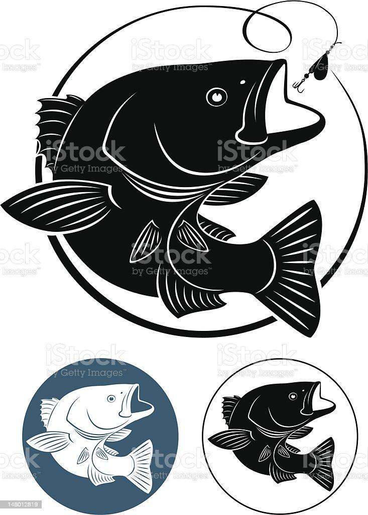 Sriped Bass royalty-free stock vector art