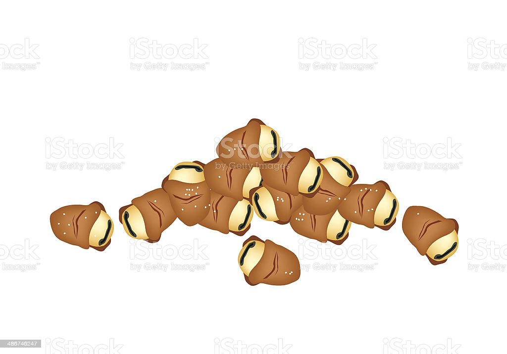 Stack of Dried Broad  or European Beans vector art illustration