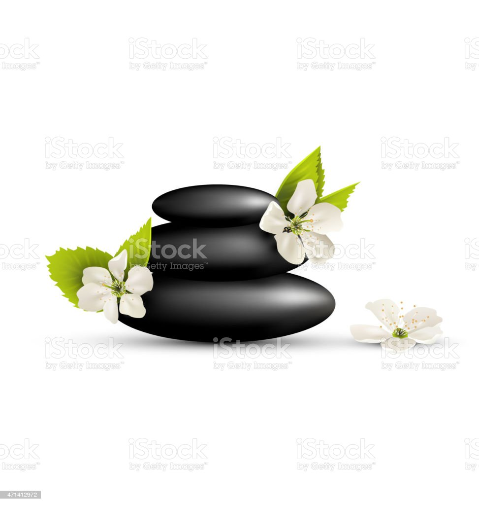 Stack of spa stones with cherry white flowers isolated vector art illustration