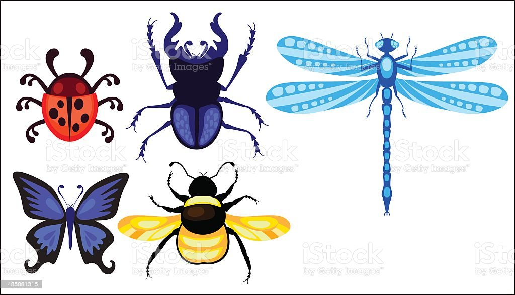 stag-beetle; dragonfly; ladybug; butterfly and bumblebee set vector art illustration