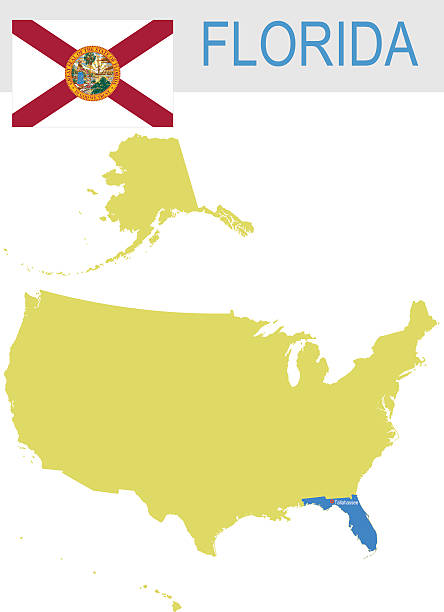 Florida State Clip Art, Vector Images & Illustrations - iStock