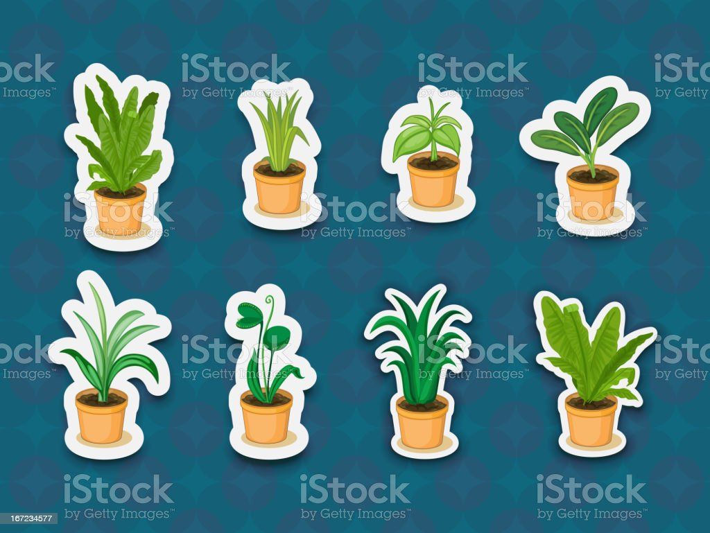 Sticker series of plants royalty-free stock vector art
